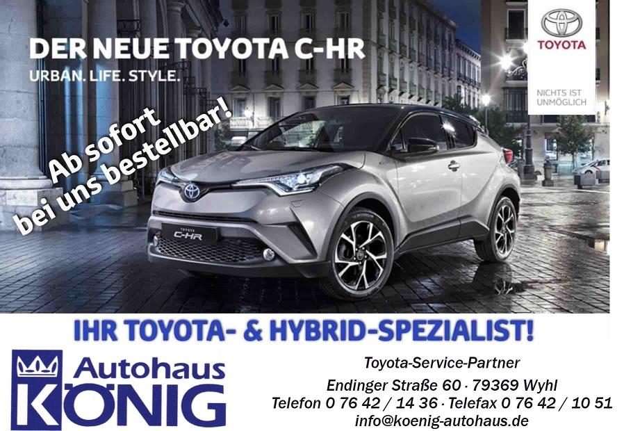 Hybrid-bei-Toyota-Koenig-wyhl